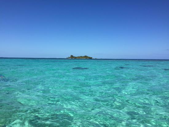 Jaguar Reef Lodge & Spa: snorkeling trip