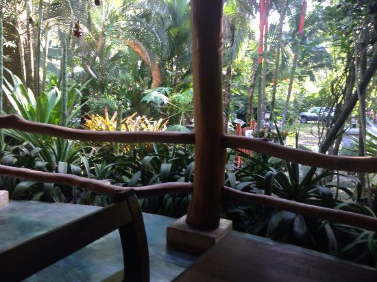 El Nido Cabinas: Desde la terraza, desayunando!