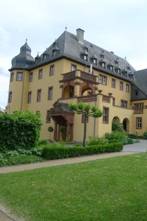 Oestrich-Winkel, Alemania: замок