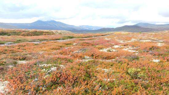 Valles del Este, Noruega: weer een van de uitzichten die je hebt
