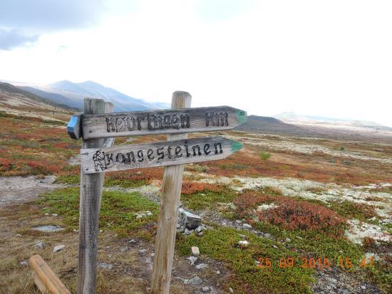 Valles del Este, Noruega: een van de route,s die je kunt volgen