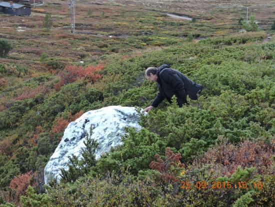 Valles del Este, Noruega: leek op sneeuw