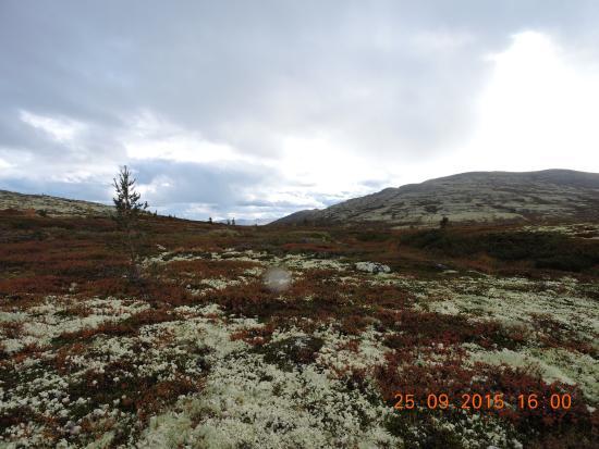 Valles del Este, Noruega: wat een kleuren