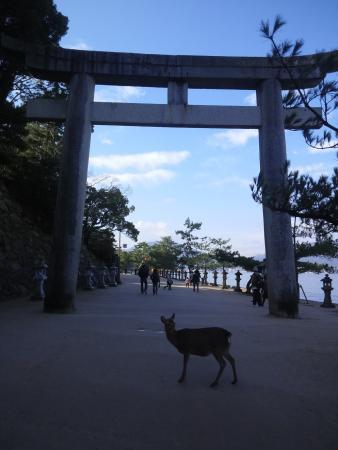 Mikasahama Beach
