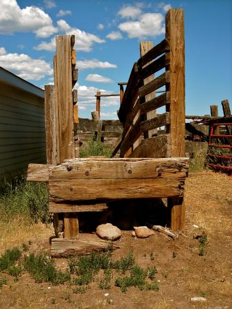 The Historic Beckwith Ranch: Cattle Shoot