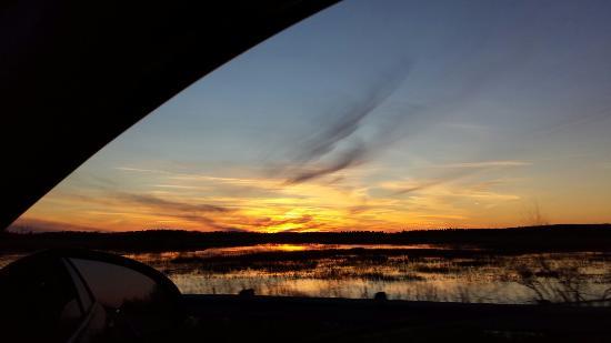 Houghton Lake, MI: Beautiful view off Old 27