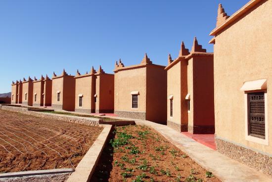 Maison d 39 hote ecolodge l ile de ouarzazate updated 2018 room prices lodge reviews morocco - Maison ouarzazate ...