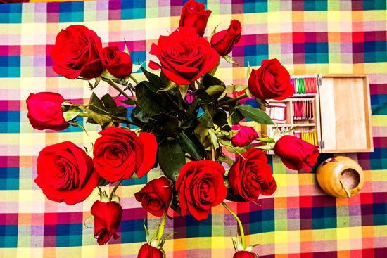 Kingdom Kichwa: roses