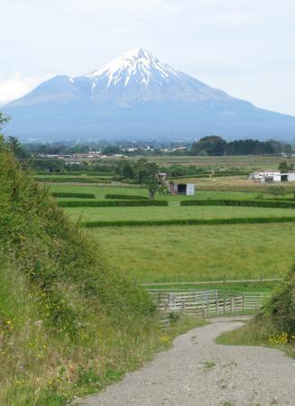 View from Barberry Hill towards Mt Taranaki