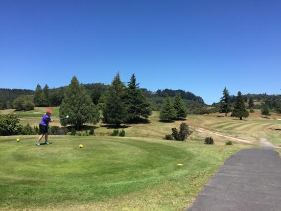 Rotorua Golf Club - Arikikapakapa Course: photo2.jpg