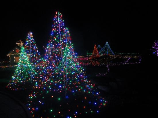 Holiday Light Display Picture Of Coastal Maine Botanical Gardens Boothbay Tripadvisor
