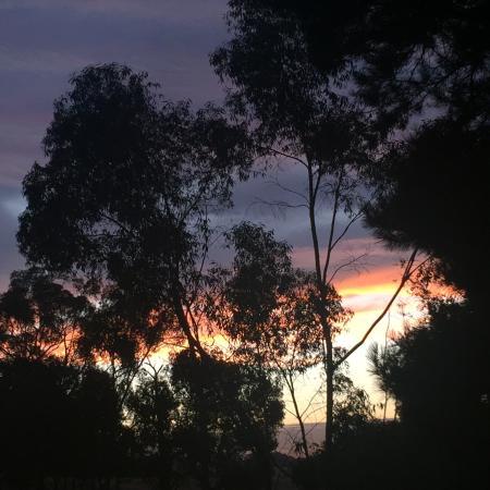Balhannah, Australië: photo1.jpg