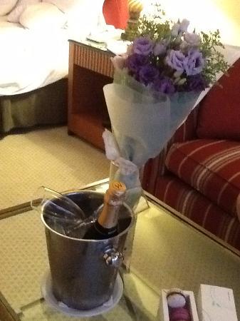 """Sheraton Pilar Hotel & Convention Center: El recibimiento con flores Champagne y lo mas rico """"macarrons"""""""