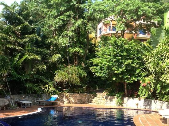 Piscine picture of spring valley resort kep tripadvisor for Piscine vallet