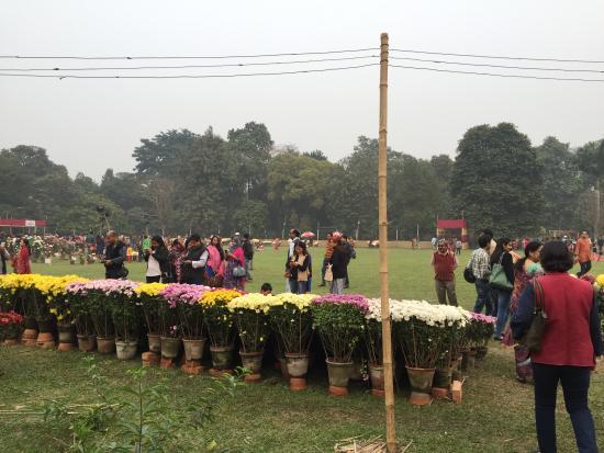 Horticultural Gardens