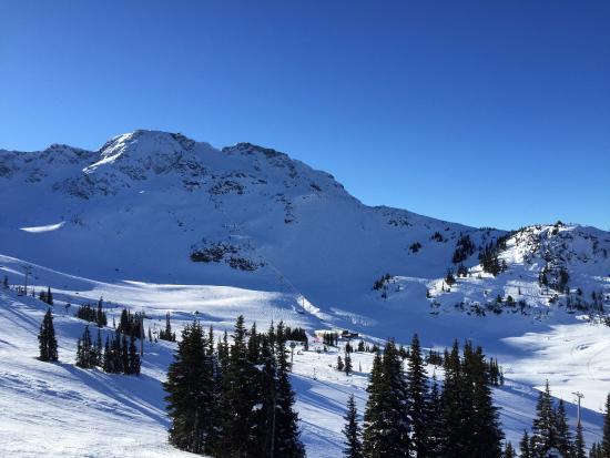 Photo0 Jpg Picture Of Blackcomb Snowmobile Whistler Tripadvisor