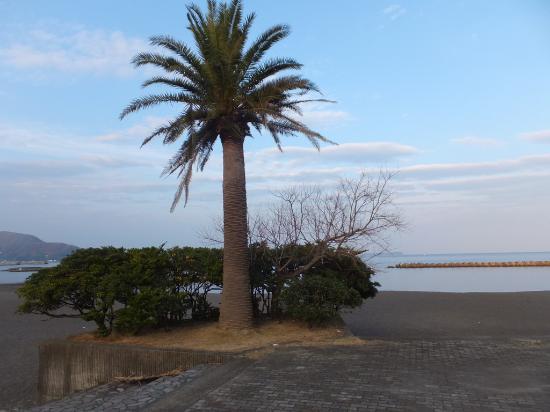 Ito Orange Beach: 伊東オレンジビーチ