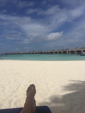 馬爾代夫W度假村照片