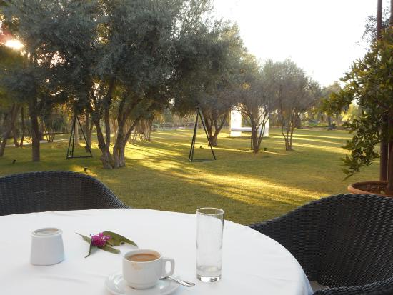 Les Deux Tours: The elegant garden in the Winter morning sun from the breakfast patio