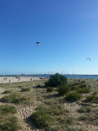 Kites near Middle Park Beach
