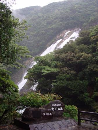 Oko Fall: 大川の滝