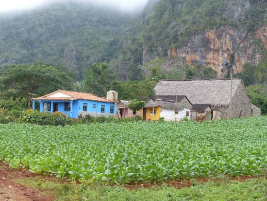 habitat rural picture of valle de vinales vinales tripadvisor