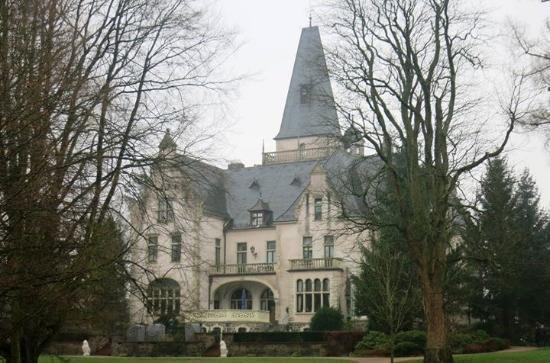 Hotel Schloss Tremsbuttel : Slottet set fra parken