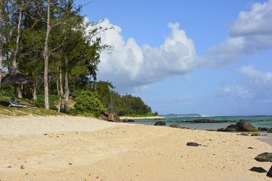 Mauritian Gem