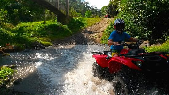 Ty's Sports Grill: Awesome ATV tour
