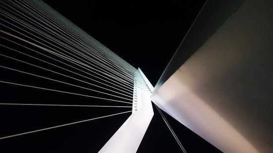 Erasmus Bridge: Brug bij nacht