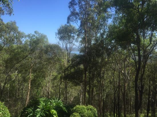 Clear Mountain, Australien: View