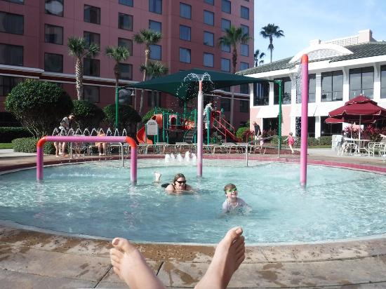 Fun at the kids pool and play area picture of caribe for Pool show in orlando 2016