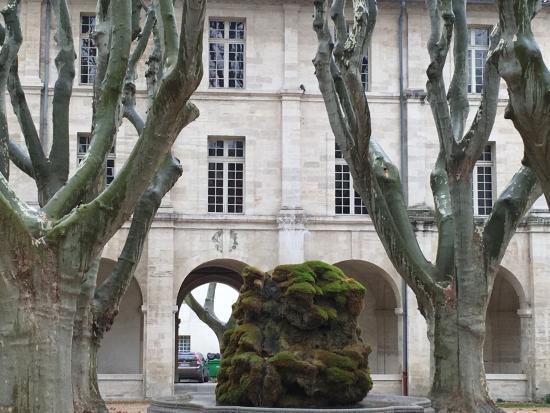 Hotel Cloitre Saint Louis: La cour et la fontaine