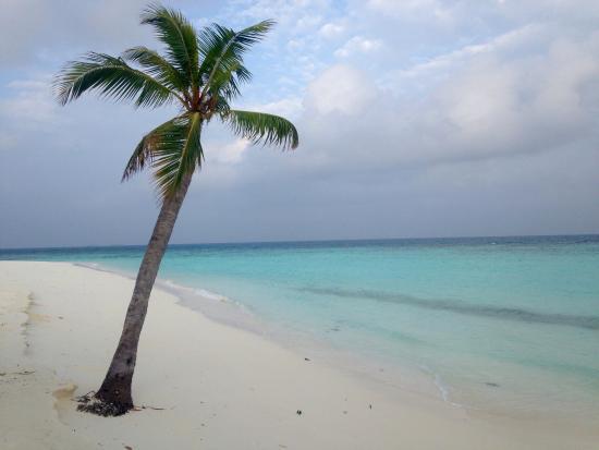 Thulhagiri Island Resort: photo8.jpg