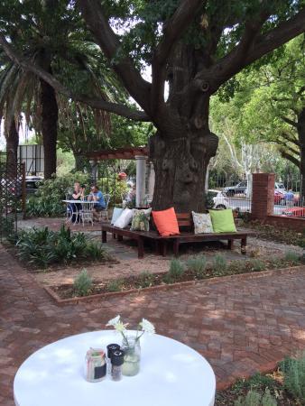 Benoni, Sydafrika: photo0.jpg