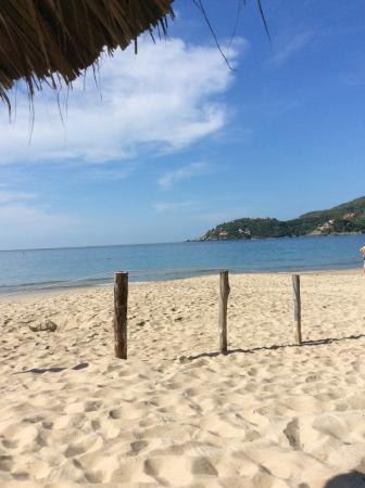 Catalina Beach Resort: Playa la Ropa