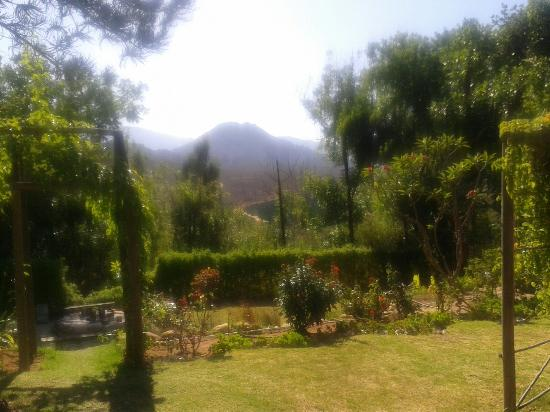 Ukholo Lodge: view in the garden