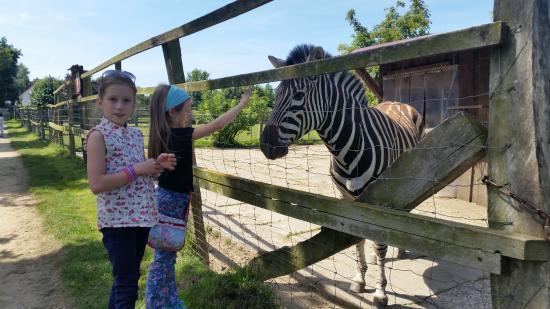 Kruzen Zoo