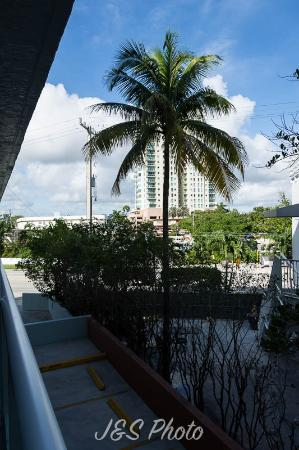 BEST WESTERN PLUS Oceanside Inn: View from the non-ocean view room