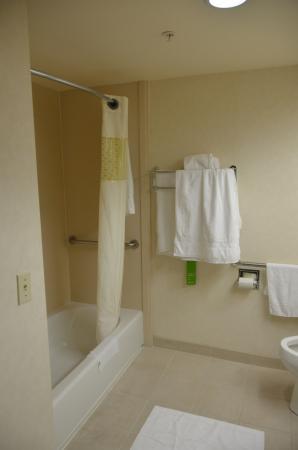 Hampton Inn San Francisco - Daly City: Banheiro
