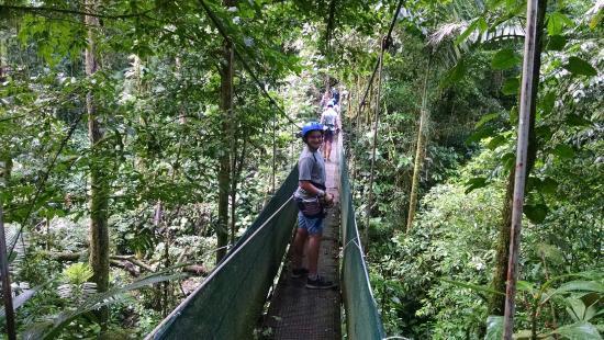 Arenal Mundo Aventura : hanging bridge