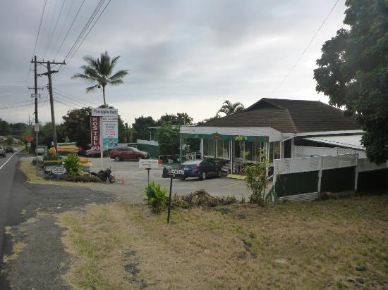 Pineapple Park - Kona: P1140922_large.jpg