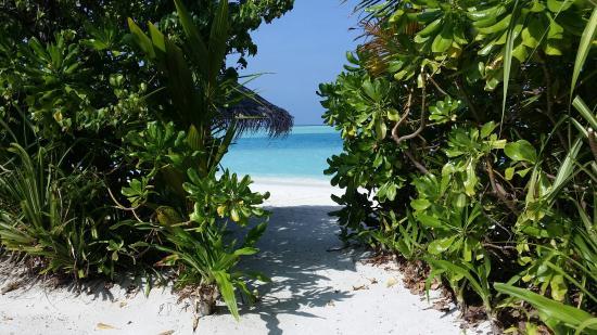 Anantara Dhigu Maldives Resort: 20141016_090234_large.jpg