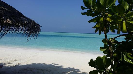 Anantara Dhigu Maldives Resort: 20141016_090249_large.jpg