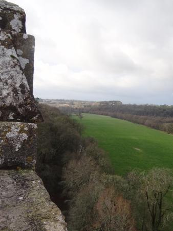 Blarney Kalesi ve Bahçeleri: Top of Blarney Castle