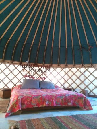 Yurts Tarifa: IMG_20150928_104705_large.jpg