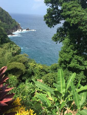 Northeast Coast, Tobago: View from Gloucester Place