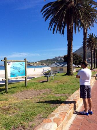 Camps Bay, Sør-Afrika: photo1.jpg