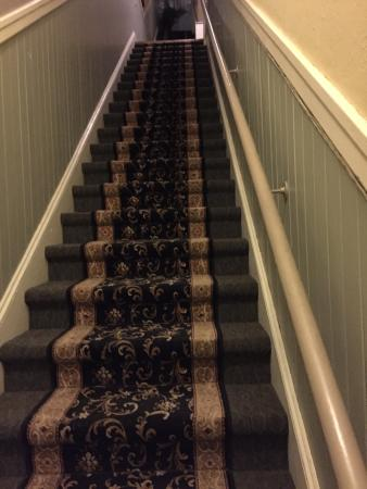 The Willows Bed and Breakfast Inn: Willows stairs from the street to the BnB