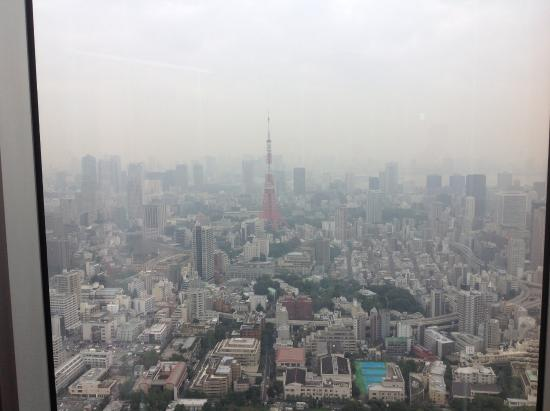 iets wat gelijkt op een vergezicht - Picture of Tokyo City View Observation D...